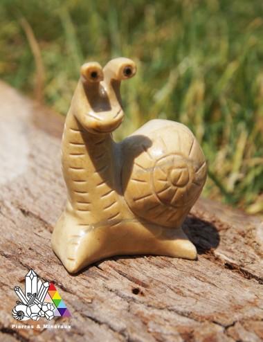 Escargot 1